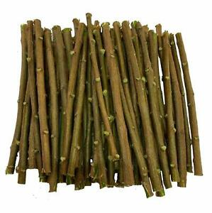 10 PC  Neem Chew Sticks For Healthy Teeth And Gums Free Shipping