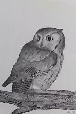 Screech Owl Print by Alan Long Double Signed & Numbered LE