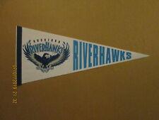 Frontier League Rockford Riverhawks Vintage Defunct 1990's Logo Baseball Pennant