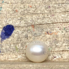 Neverwinter White Pearl Akoya - Quality AAA Large 7-9mm - Located USA