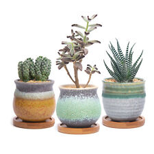 Set 3 T4U Ceramic Succulent Cactus Planter Plant Flower Pot with Bamboo Trays