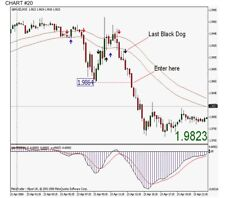 Black Dog system has everything one needs to trade the Forex