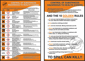 COSHH HEALTH AND & SAFETY 2 x LAMINATED A4 WORKPLACE POSTERS