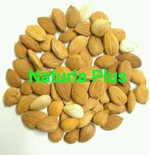1 kg Bitter & Sweet Raw Apricot Kernels Seeds Natural Vitamin B17 FREE GIFT!