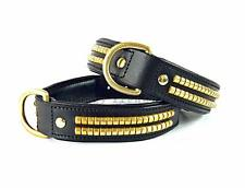Leather Dog Collar Black Brass Studded Staffy Bull Terrier Rottweiler