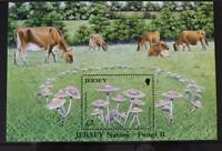 """Jersey Stamps: Jersey Nature """"Fungi II"""" £2 M/S Presentation Pack 2005"""