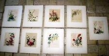 9x CHROMOLITHOGRAPHIE v. Hirt 19. Jhdt. Biedermeier Stil Blumenbilder Gedichte