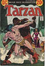DC Comics Tarzan Of The Apes (1972 Series) # 217 FN/VF 7.0