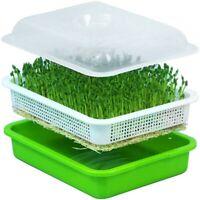 Samen Sprouter Tablett mit Deckel BPA Freie Bohne Sprout Erzeuger Z8S9
