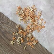 Mini Natural Starfish Shell Beach Sea Star Landscape Crafts Making Decor 50PCs