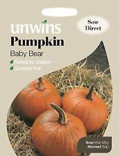 Unwins Pictorial Packet - Vegetable - Pumpkin Baby Bear - 10 Seeds