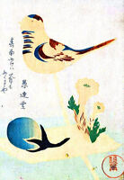 Framed Print - Vintage Asian Japanese Chinese Bird (Picture Poster Oriental Art)