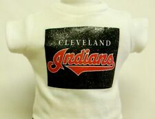 "Cleveland Indians Theme Silver Glitter Transfer T-Shirt For 16"" Or 18"" Dolls"
