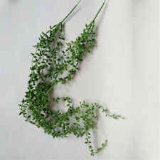 Artificial String of Pearls Faux House Plant in Pot & Hanging Decor S3