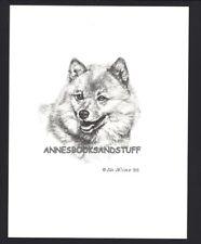 #402 Finnish Spitz portrait dog art print * Pen & ink drawing by Jan Jellins