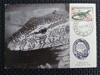 FRANCE MK 1955 AFRIQUE REPTIL VARAN NIL MAXIMUMKARTE MAXIMUM CARD MC CM c1185