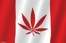 CANADIAN FLAG - WEED POSTER - 22x34 - POT MARIJUANA 16572
