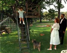 John F. Kennedy Jr. climbs tree house at White House New 8x10 Photo
