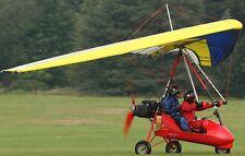 GTE-503 Clipper Trike Air Creation Airplane Mahogany Kiln Wood Model Large New