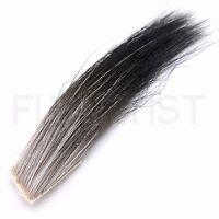 Fly Tying  NIP tails /& bodies ELK MANE  Great for wings