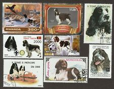 English Springer Spaniel * Int'l Dog Stamp Art Collection *Great Gift Idea*