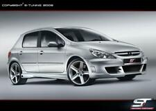 PEUGEOT 307 / FULL BODY KIT / FIT PERFECT / REAL PHOTO
