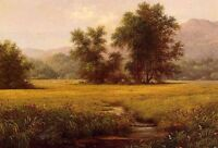 Beautiful Oil painting Martin Johnson Heade - The Meadow in summer landscape