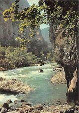 BR13460 Dans Le fond des Gorges les Falaises du Cauchet Gorges du Verdon  france
