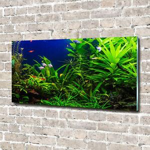 Wandbild aus Plexiglas® Druck auf Acryl 140x70 Landschaften Fische im Aquarium