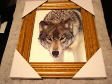 Wolf 11X13 Mdf Framed Picture Poster #2 ( Wood Look Frame )