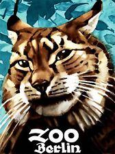 ART PRINT POSTER Pubblicità evento Venue dello zoo di Berlino Lynx Germania nofl0627