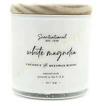 Scentsational Coconut & Beeswax 5oz Single Wick Small Candle - White Magnolia