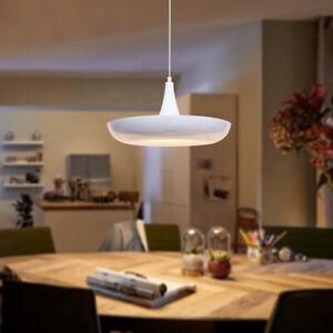 Vintage Industrial Metal Ceiling Pendant Shade Modern Hanging Dine Light M0122
