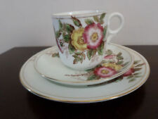 Tea Cup & Saucer Unmarked Porcelain & China