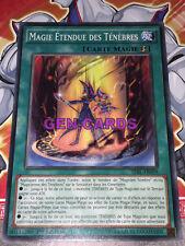 Carte Yu Gi Oh MAGIE ETENDUE DES TENEBRES TDIL-FR059 x 2