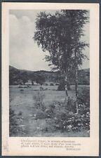 BERTACCHI G. - POESIA SONDRIO ? Cartolina