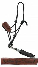 """""""Follow Your Dreams"""" Rope Horse Halter Padded Leather Noseband Removable Lead"""