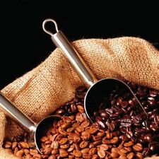 1 Pack 20 Coffee Bean Seeds Home Garden Plant Healthy Bulk Seeds S047