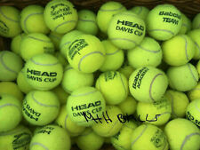15 Used Tennis Balls For Dogs All in Great Condition Sanitised and Pet Friendly