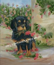 CAVALIER KING CHARLES SPANIEL BLACK TAN NEW ORIGINAL OIL PAINTING SANDRA COEN