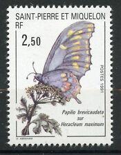STAMP /  TIMBRE SAINT PIERRE ET MIQUELON N° 534 ** faune papillon