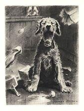"""Airedale Terrier - Dog Art Print - M. Dennis """"N"""""""