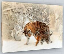 STUNNING SNOW TIGER CANVAS PICTURE PRINT WALL ART CHUNKY FRAME LARGE 2098-2