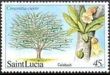 "SAINT LUCIA -1984- ""Calabash Tree"" - MNH Commemorative Stamp - Scott #650"