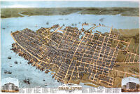Map of Charleston, South Carolina; 1874; Antique Birdseye Map