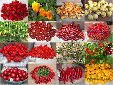 Chili Mix - 16 Sorten ultra scharf, je 15 Samen, Habanero, Jolokia, Scorpion usw