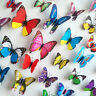 3D Butterfly 12PCS Wall Stickers Wall Decors Wall Art Wall 9 Colours