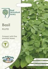 Mr Fothergills -  Vegetable - RHS Basil Pluto - 300 Seeds