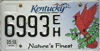Kentucky  License Plate,  Original Kennzeichen USA  6993EH  ORIGINALBILD