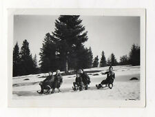 PHOTO ANCIENNE Groupe Ski Luge Sports d'hiver Snapshot Vers 1930 Descente